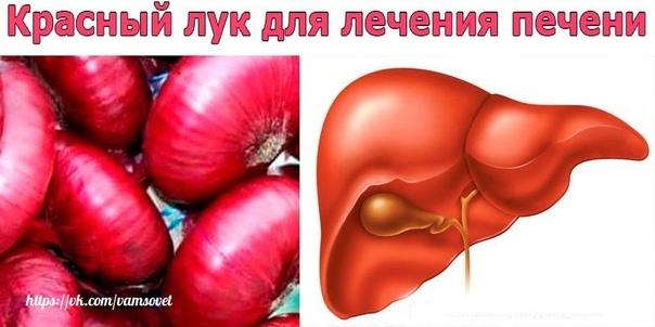 Красный лук для лечения печени. Сейчас многие жалуются на проблемы с печенью. Есть очень простой и дешёвый способ восстановить её.