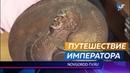 Утраченный в военные годы бронзовый барельеф «Император Александр I» нашли у деревни Шумилов Бор
