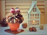 Vekoria | мастер-класс композиция из даров осени | DIY arrangement of autumn materials