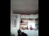 Бэтмен и зажигалка (6 sec)