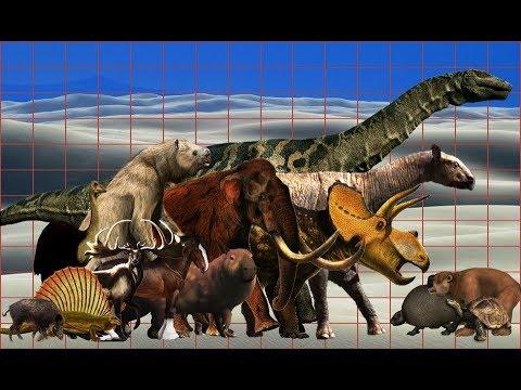 Terrestrial herbivores size comparison | Extinct and present