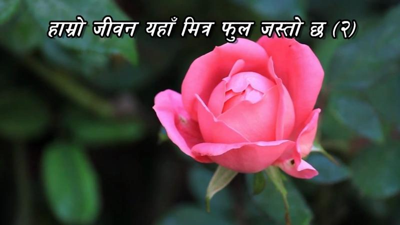 Nepali Christian Songs Elsaddai - Hamro Jiwan yaha mitra phool jasto chha