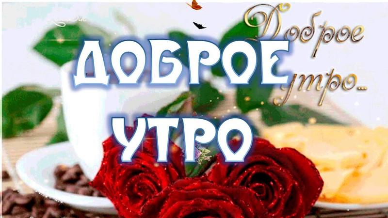 Красивая Открытка с Добрым Утром Любимой Видео Открытка с Добрым Утром Любимой