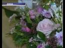 Голландские селекционеры вывели новый сорт роз в честь Донецка