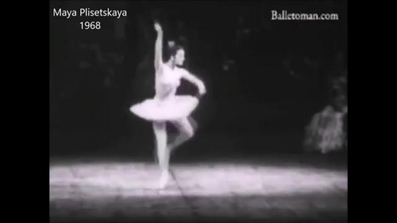 100 лет русского балета Танцовщицы