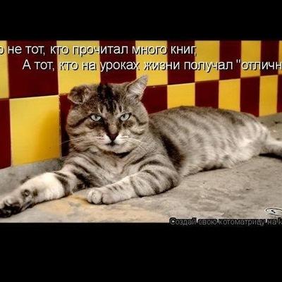 Анна Лакманова, 17 мая 1993, Санкт-Петербург, id6548583
