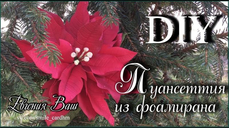 Пуансеттия без молдов и шаблонов. Рождественская Звезда.