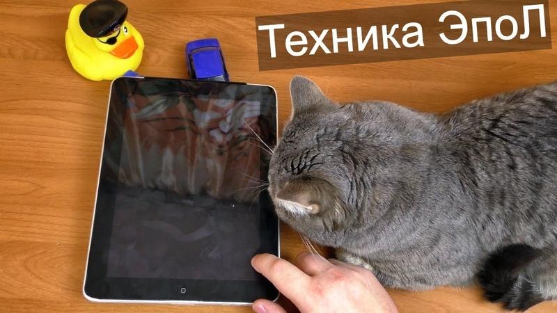 IPad за 300 и iPhone 5S за 500 рублей / Покупки на блошинке 5