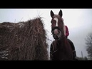 Великий Новгород. Детей выгоняют на улицу. История про лошадей и чиновников.