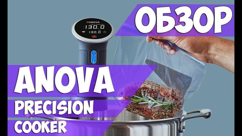 Anova Precision Cooker Обзор погружного термостата Отзыв покупателя