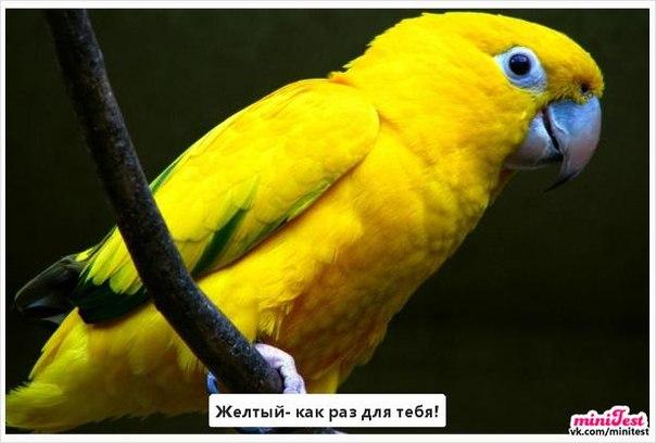 Фото №334553944 со страницы Ларисы Запольской