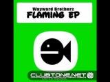 Wayward Brothers - Contradictory (original mix)
