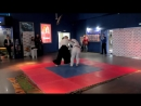 Теншин Айкидо демо на премьере кунг фу панда 3