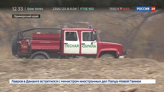 Новости на Россия 24 • Пожары в Приморье: в регионе действует особый противопожарный режим