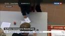 Новости на Россия 24 • Выборы президента Финляндии: Ниинистё победил, набрав 62,7 процента голосов