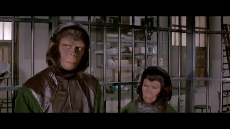 Тематическая неделя Планеты обезьян: Корнелиус и Зира