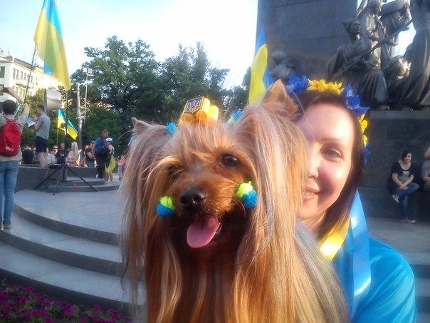 Вопрос о членстве Украины в НАТО на повестке дня не стоит - МИД Польши - Цензор.НЕТ 6752