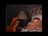 Alf Quote Season 2 Episode 11_У холодильника