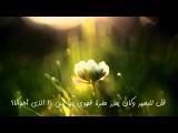 مميز _لله في الآفاق آيات كاملة للشيخ عبد ال&#16