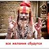 Evgeny Pchyolkin