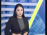Чемпионат республики Казахстан по джиу-джитсу среди молодёжи