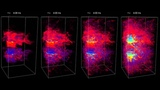 Magnetic field amplification in hypernovae - different resolutions