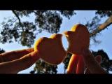 Chris Schweizer - Diakrinousa (Roby K &amp Flashtech Remix)