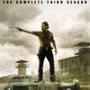 The Walking Dead Season 4 streaming vk