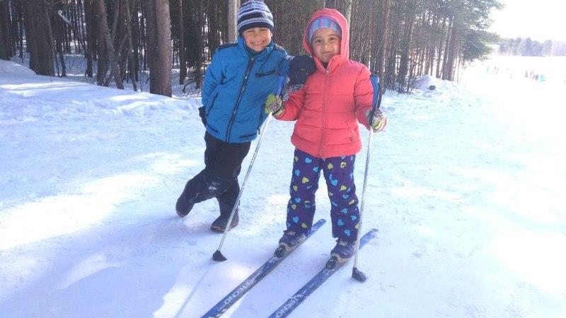 Fındık ailesi kayak yapıyor. Karda eğlenceli oyunlar