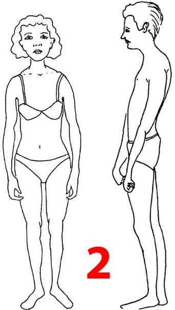 Что можно сказать о тебе по твоему телосложению? - Телосложение зависимого.