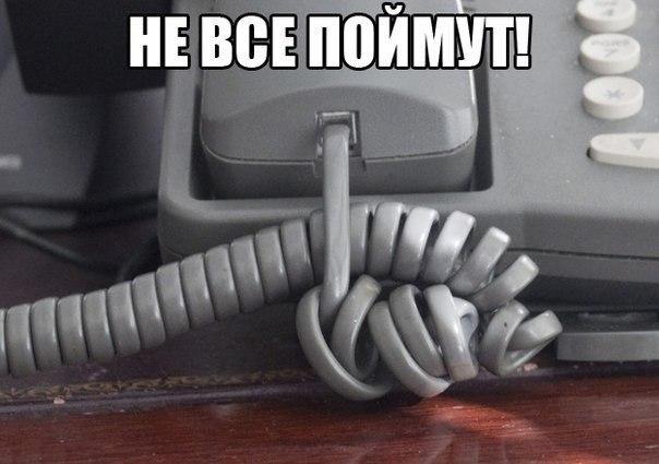 http://cs312131.vk.me/v312131505/88f0/ls2M9TSH0cM.jpg