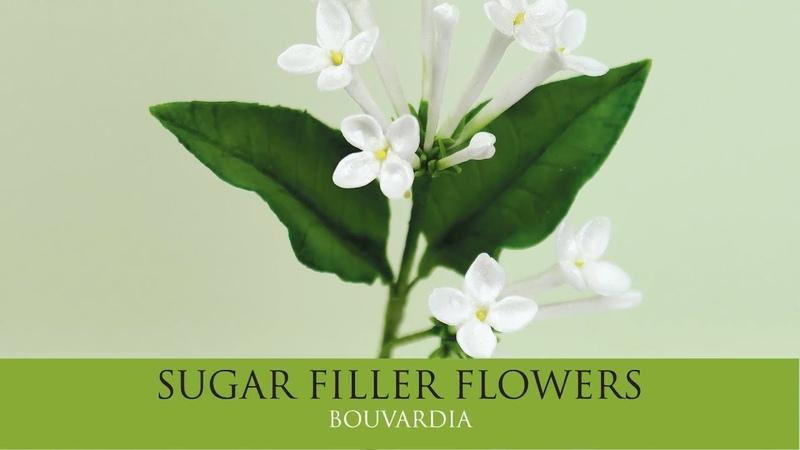 How to Make Bouvardia Sugar Filler Flowers Part 7