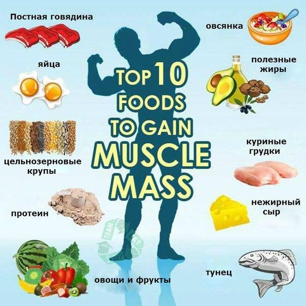Топ - 10 продуктов для роста мышц