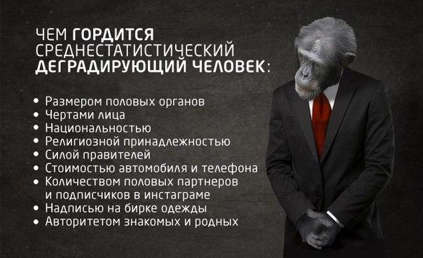 http://cs543100.vk.me/v543100176/1c6bc/VbeYIO1J5aQ.jpg