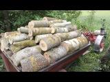 В холодное лето за дровами на мотоблоке Беларус !