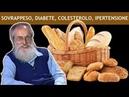 Dott Mozzi Causa e rimedio di sovrappeso diabete colesterolo ipertensione sindrome metabolica