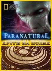 Паранормальное: Круги на полях / Paranormal: Crop circles