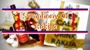 SrpskiBass - Symphony Of Rakija Out on Spotify, ITunes, etc.