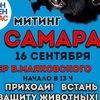 """Всероссийская акция """"ЗАКОН НУЖЕН СЕЙЧАС!"""" Самара"""