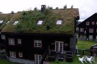 Нагрузка такой крыши около 50 кг на кв.м., в дождь до 80 кг.