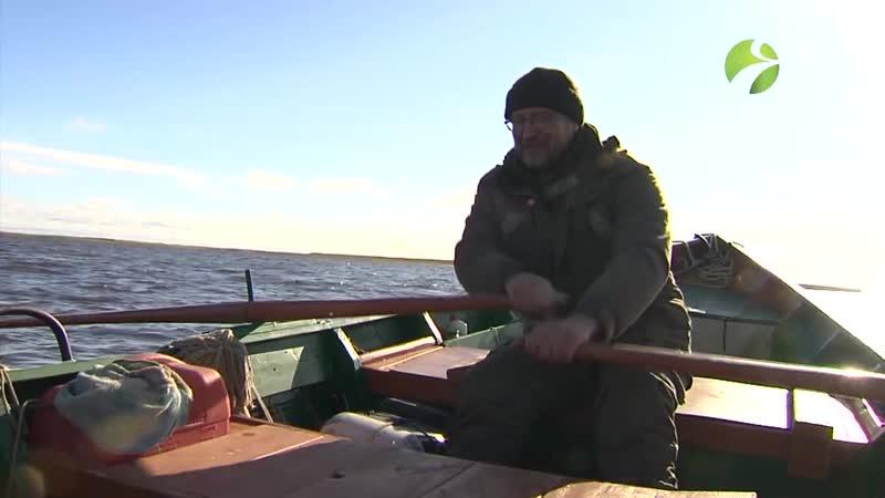 С Полем! Хвалю, юнга! Или промысловая рыбалка на Крайнем Севере