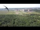 Мавик птица