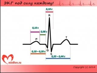 Лекция 2. Пропедевтика внутренних болезней. ЭКГ