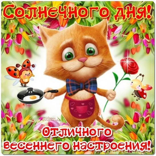 http://cs7063.vk.me/c7002/v7002441/46a4/Dm2JBGsMKwU.jpg