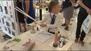 От 4 до 10: Всероссийский конкурс детских исследовательских работ проходит в Сочи
