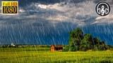 Сильный Шум Дождя и Звуки Ветра. 10 Часов Релакса Для Учёбы и Сна
