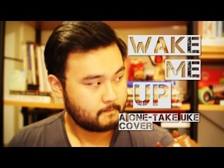 Wake Me Up - Avicii - Aloe Blacc - Ukulele Cover