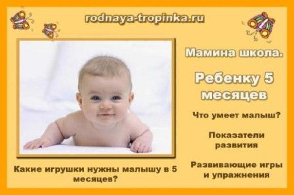 http://cs616823.vk.me/v616823044/1372e/U35yWu8PBg0.jpg