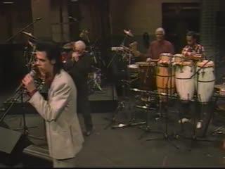 Nick Cave performing
