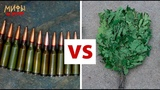 Пуля 5,45 не пробивает ветки и рикошетит от травы Мифы об оружии №1